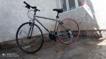 51 объявлений: Велосипеды