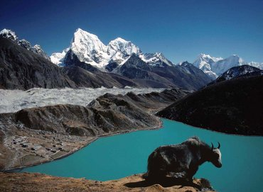 Global Link Tours & Travel is a Budget Tour Operator for Nepal and in Kathmandu