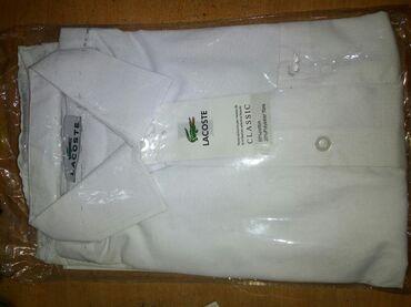 """34 р. воротник, Новая рубашка для мальчиков, """"Lacoste"""", классическая"""