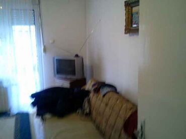 Apartment for rent: 2 sobe, 60 kv. m sq. m., Beograd