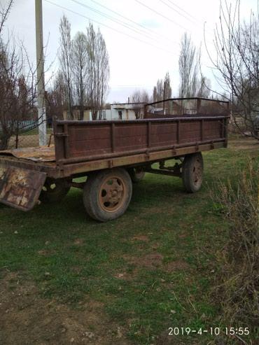 Т40 шаймандары менен в Кызыл-Суу