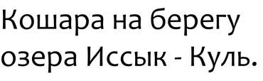 Продаю Кошару в Каракол
