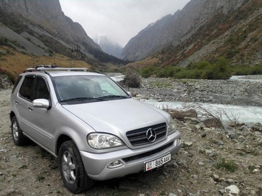 Mercedes-Benz ML 400 4 л. 2004 | 302000 км