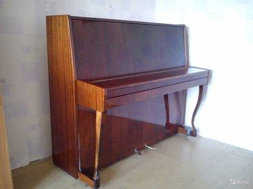 Bakı şəhərində Pianino Suita satılır - çatdırılma, köklenme, 5 il zemanetle.