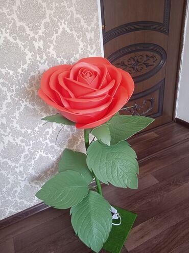 Срочно срочно продается цветок из изалона В наличии за 1800