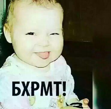 Шпакиловаа