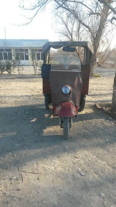 berde rayonunda kiraye evler - Azərbaycan: Muravey satlir tecili isdeyen vatsabda yaza biler muravey berde dedi