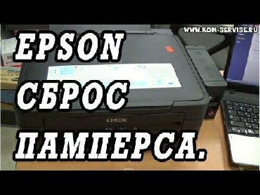 Cvetnoj printer epson p50 - Кыргызстан: Сброс памперса принтера+Выезд Удаление очереди принтераEpson