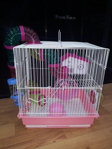 Bakı şəhərində Xamyak,cunqarik(hamster)ucun teze iki mertebeli borulu qefes satilir.