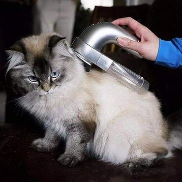 Pretvorite održavanje krzna vašeg psa ili mačke u prijatnu masažu u