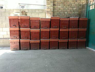 Продаются новые ящики для пчёл по вопросам звоните