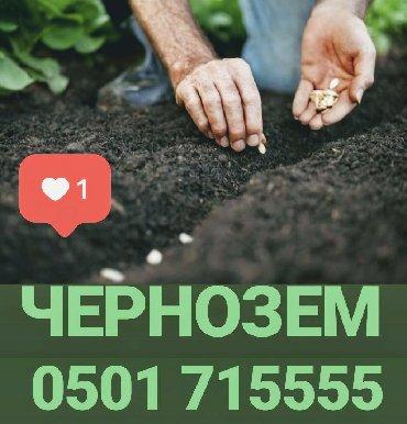 траву-для-газона в Кыргызстан: Чернозем горная земляПлодородная для газона, Огорода, цветников