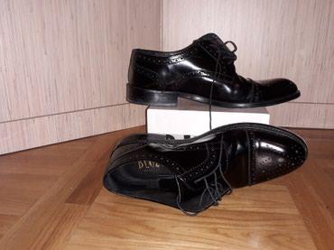 Muške cipele - Kragujevac