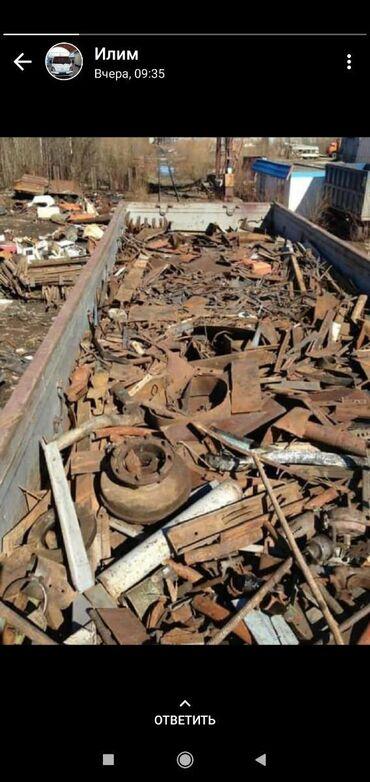 продажа щенков алабая в Кыргызстан: Темир алабыз самовывоз демонтаж