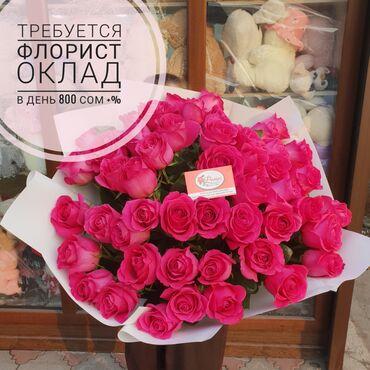 Хонор 30 про цена бишкек - Кыргызстан: Продавец-консультант. С опытом. Сменный график