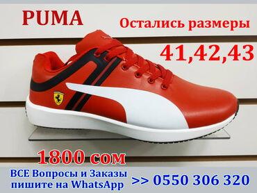 Ferrari 348 gts - Кыргызстан: Puma Ferrari кроссовки мужские Пума весна-лето АКЦИЯ !!!