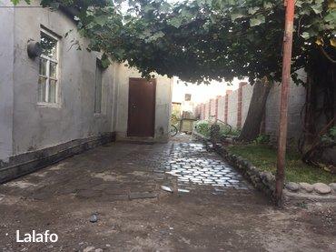 Продаю пол дома, угловой, в центре села Ново-Покаровка, рядом школа, д в Лебединовка