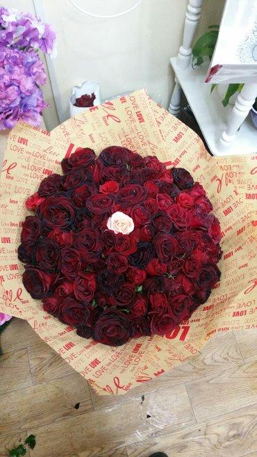 Розы 101шт в Бишкек