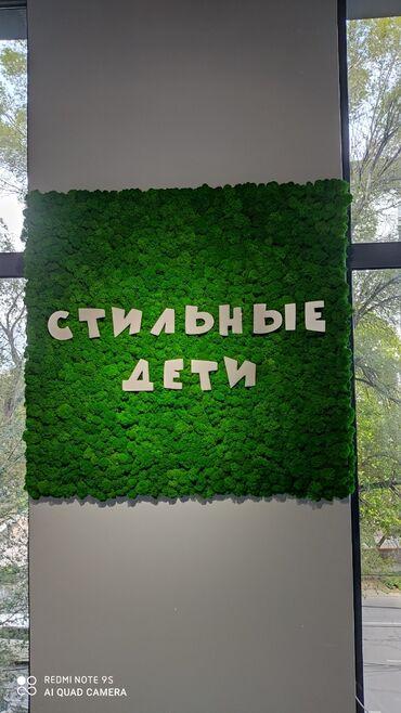 Буквы и логотипы из мха мох Бишкеке трава на стене, буква С мхом   Сде
