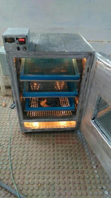 Inkubator 550 toyuq yumurtasi tutan aparat