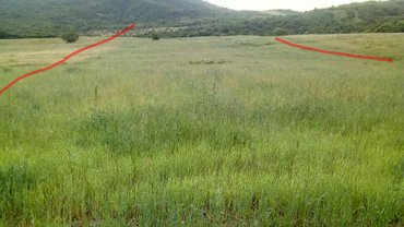 Quba şəhərində Quba Rayonunun Talabi  kendinde  ..2h65sot  ekin sahesi satilir  .sahe