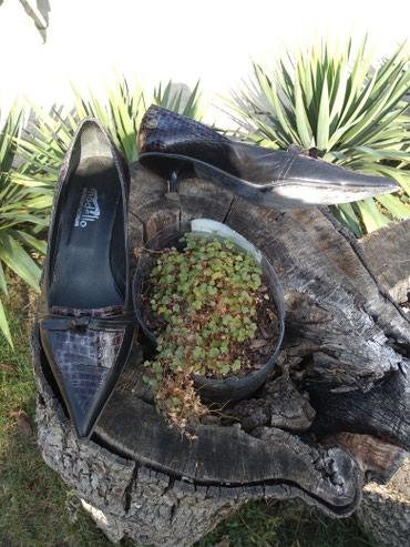 Elegantne kožne cipele veličina 40, dva puta obuvene - Vrsac