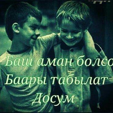 Услуги грузчиков!!!!! крепкие грузчики в Бишкек