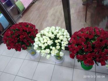 Акция от 1500 сомов 101 роза спешите! в Бишкек