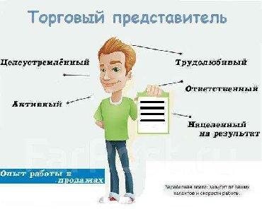 Торговые агенты - Кыргызстан: Торговый агент. Без транспорта. С опытом. 5/2