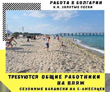 Работа общий работник на пляж в болгариюк.к.золотые пескисезонные