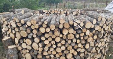 Пилим, рубим, валим деревья в Бишкек