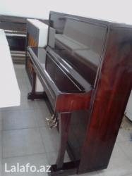 Bakı şəhərində Çox nadir rastlanan modelde 3 pedallı Petrof pianinosu satılır.