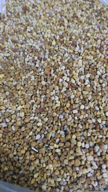 мужские вещи в Кыргызстан: Цветочная пыльца (обножка). вес одного пакетика 100гр100 гр при