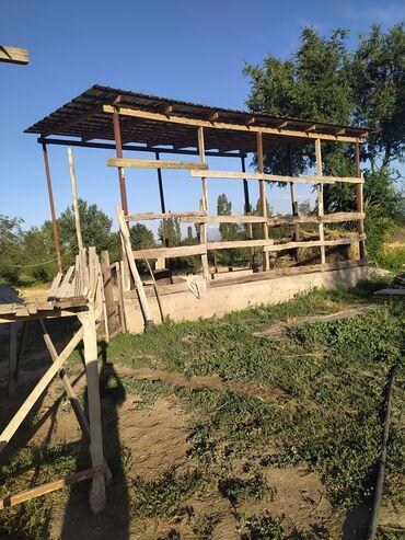 Работа - Полтавка: Уй багып берем, сарай сеновал бар. Опыт 20 жыл. Село Петровка