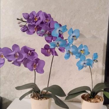 На заказ,из фоамирана орхидеи в Кок-Ой