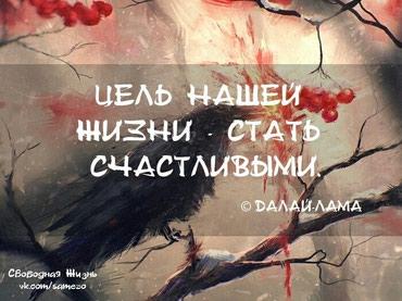 ad-image-49788532