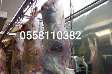 Прием скота на мясо
