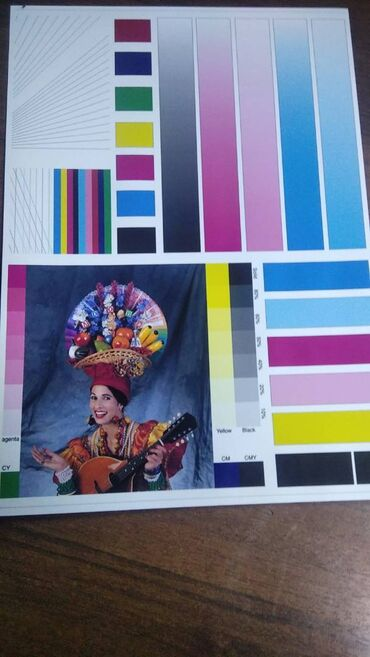 шин лайн бишкек работа in Кыргызстан | КУРЫ, ПЕТУХИ: Продаю epson l 1800 a3 формат 6 цветны заводской донорской системой