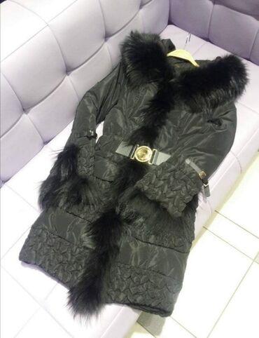 Jakna ovo - Srbija: Royal Cat jakna AKCIJA
