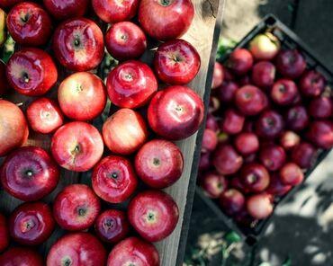 185 объявлений: Яблоки превосход