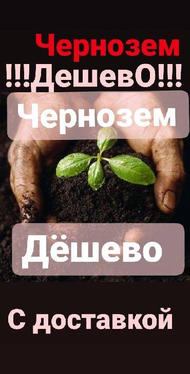 чернозем в Кыргызстан: Чернозём чернозем чернозем чернозем чернозем чернозем чернозем черноз