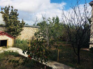 bakida hovuzlar - Azərbaycan: İcarəyə verilir Evlər Sutkalıq mülkiyyətçidən: 150 kv. m, 4 otaqlı