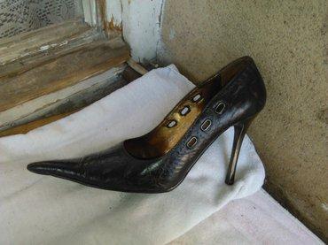Extra kozne cipele - Prokuplje