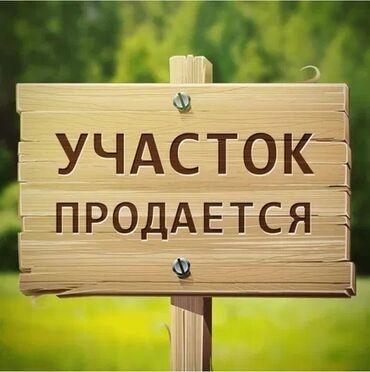 купить кувшинки для пруда в Кыргызстан: Продам 180 соток Для сельского хозяйства Срочная продажа