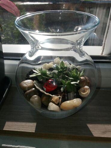 Kućni dekor - Mladenovac: Mini bašta u vazi. Sve moje radove pogledajte i na instagram nalogu