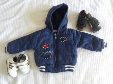 Zimska deblja jaknica - Barajevo