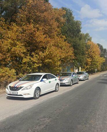 | Региональные перевозки Легковое авто | 4 мест
