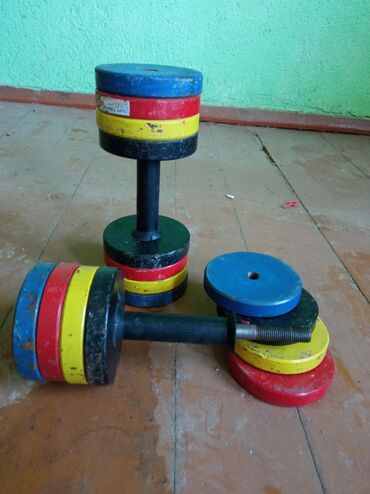 Спорт и хобби - Талас: Две половинки по 12 кг  Цена : 2500 окончательно