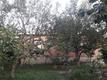 дом с цокольным этажом и гаражом в Азербайджан: Продажа 20 соток от собственника