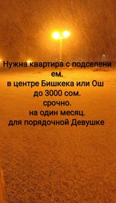 1 кг суши - Кыргызстан: Ищу квартиру (с подс) в центре города Ош или бишкек на один месяц до